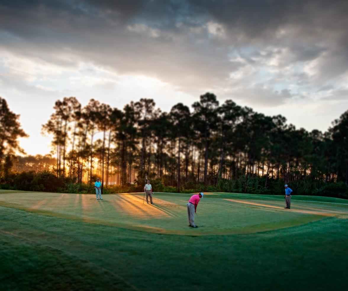 Mediterra Golf Community in Naples Florida