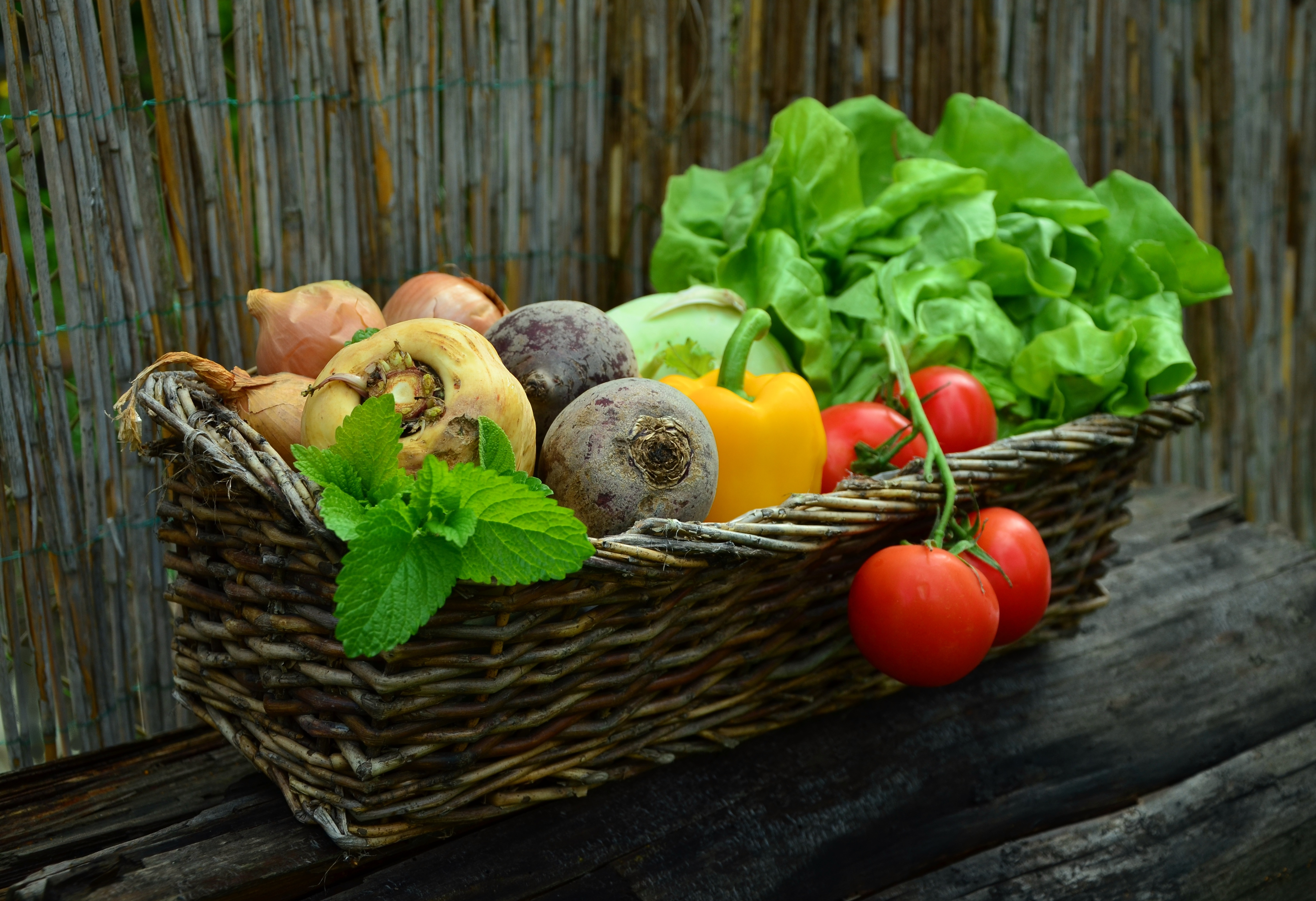 Discover part of the Naples lifestyle with our best Farmer's Markets